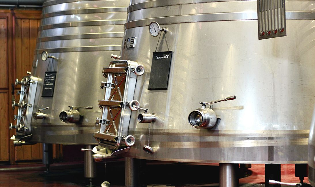 Fermentación del vino en Alicante