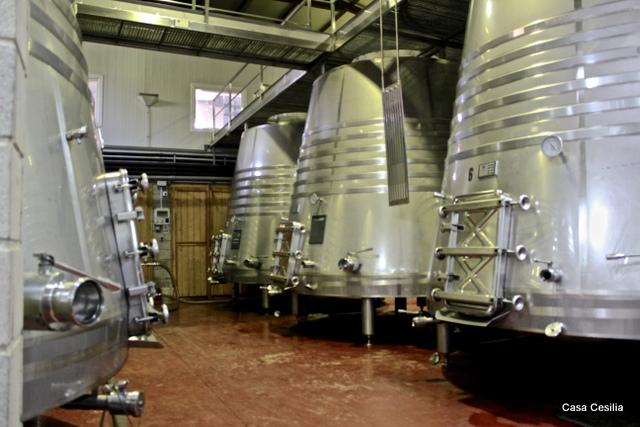 Elaboración de vino en Alicante