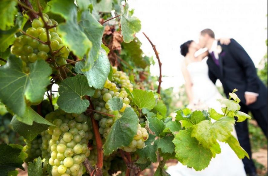 Fincas para bodas en Alicante