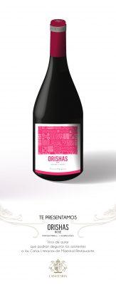 botellas -buena presentación-ORISHAS-04