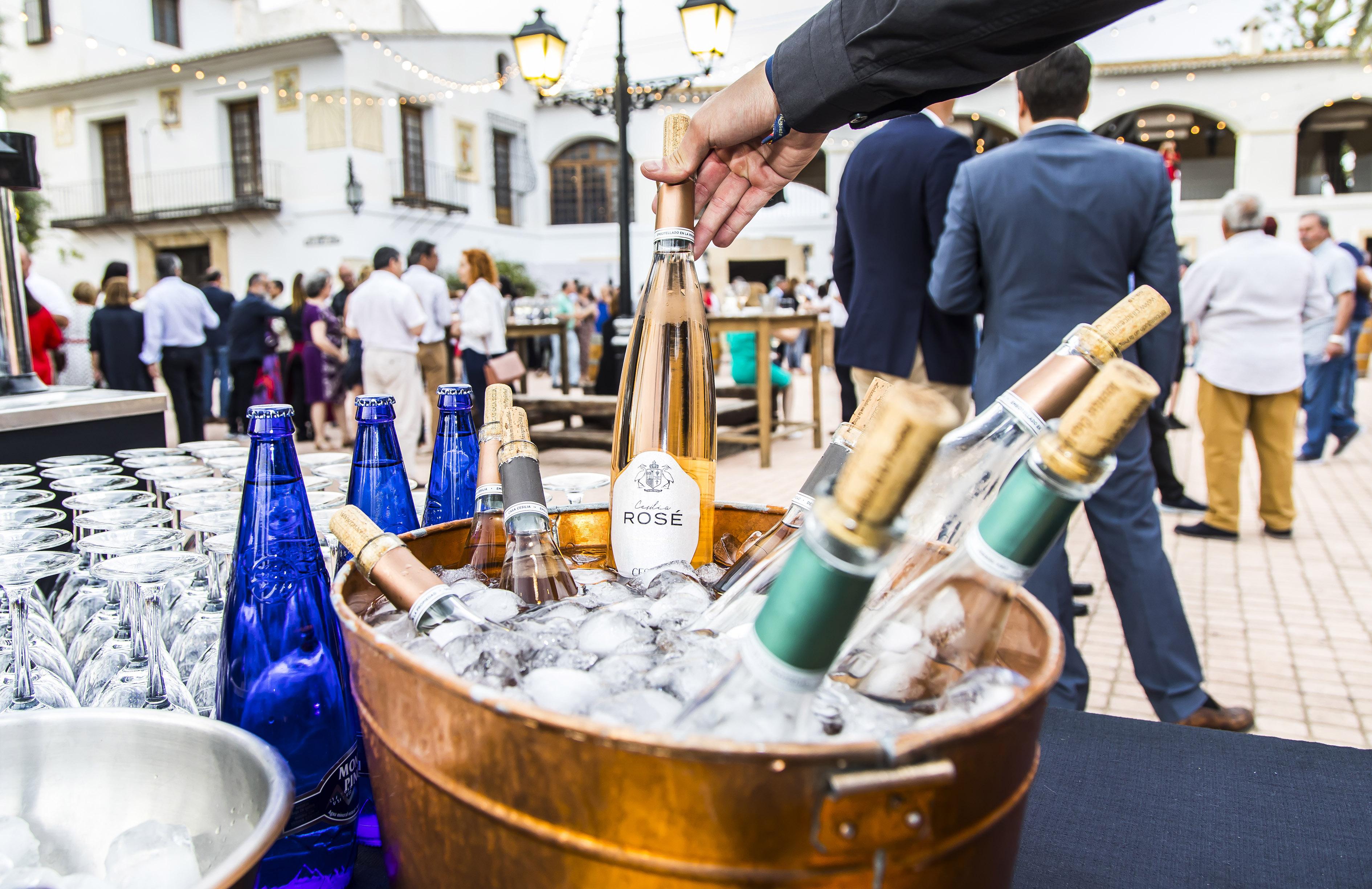 Nuevos Vinos Casa Sicilia DA Alicante